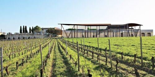 Création d'un chai viticole à Saint-Émilion